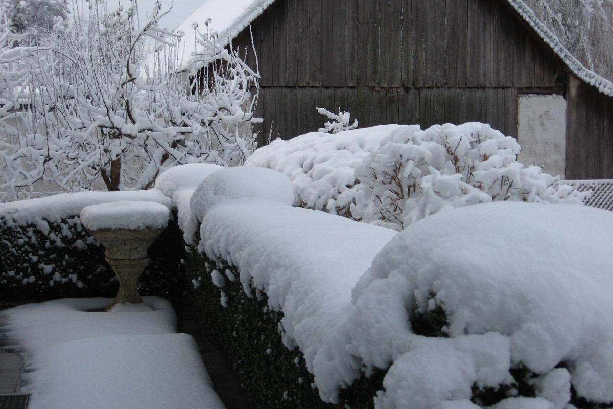 Winterlicher Garten